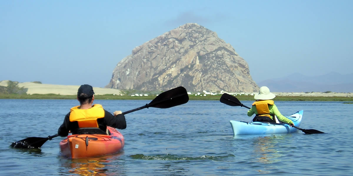 kayak at morro bay